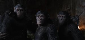 Pianeta scimmie 2
